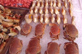 rybí trh v Bergenu